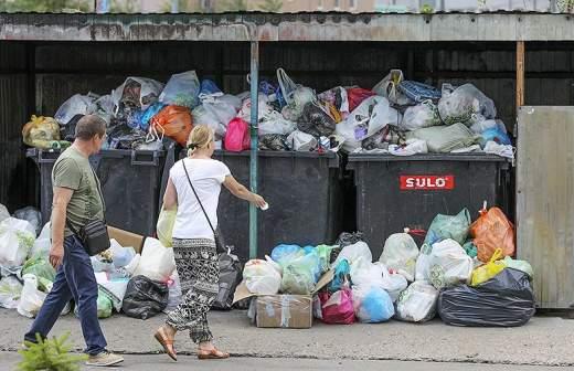 В России нашли способ удешивить производство разлагаемого пластика