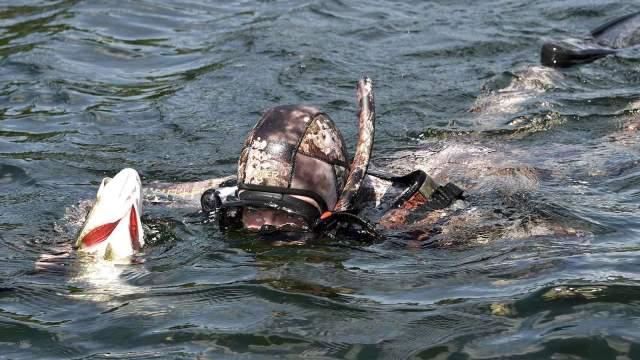 ловля рыбы с берега на кипре