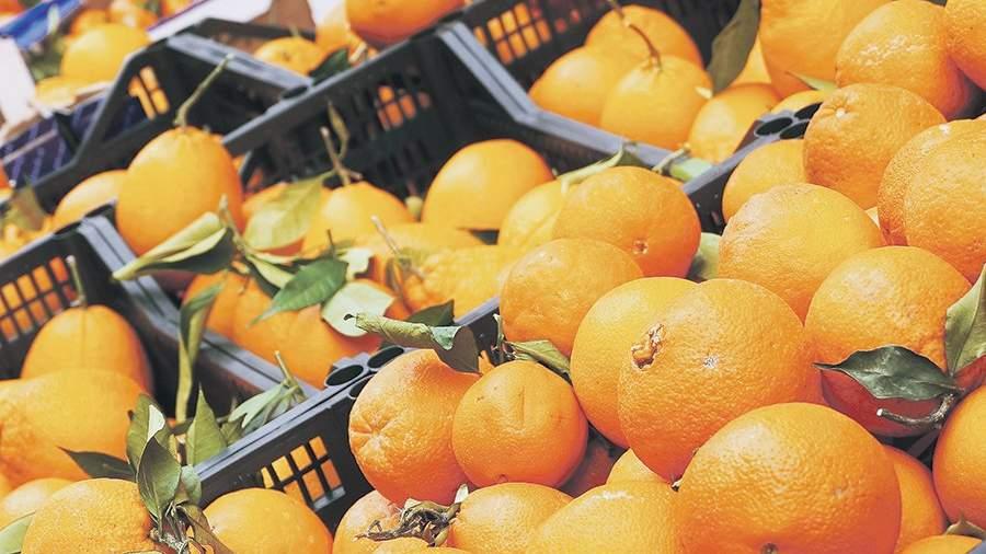 Плохой урожай цитрусовых поднял цены наапельсины