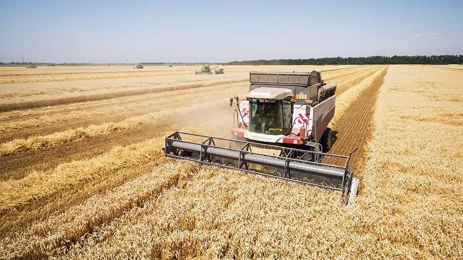 Рекордный урожай зерновых в РФ вызовет дефляцию— специалисты