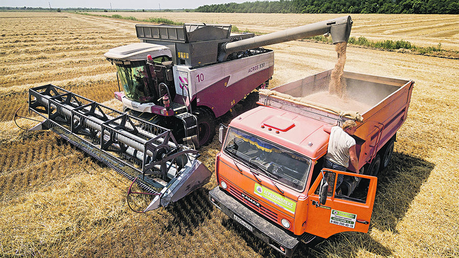 Экспорт русской пшеницы вырос практически начетверть заянварь-октябрь— Минсельхоз