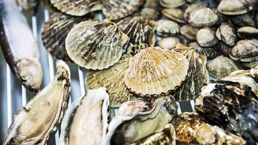 В РФ упадут цены наморские деликатесы