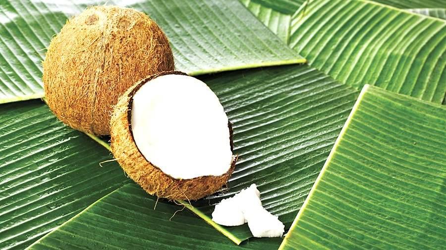 ВРоссии разработали ГОСТ для кокосовых орехов
