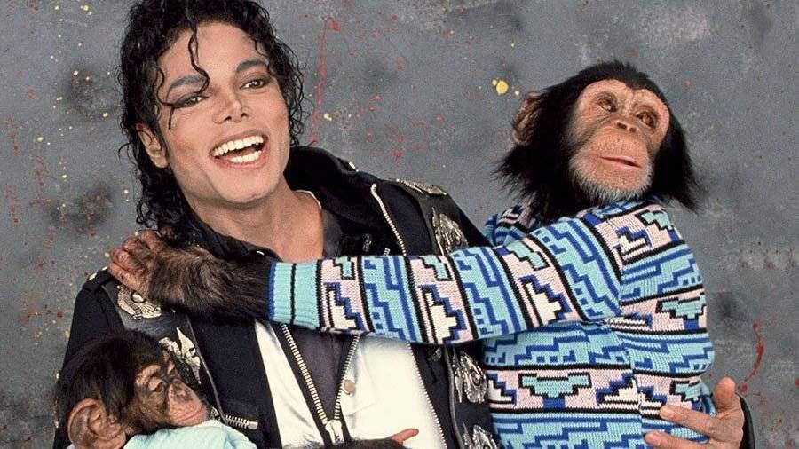 Картины домашней обезьяны Майкла Джексона ушли смолотка