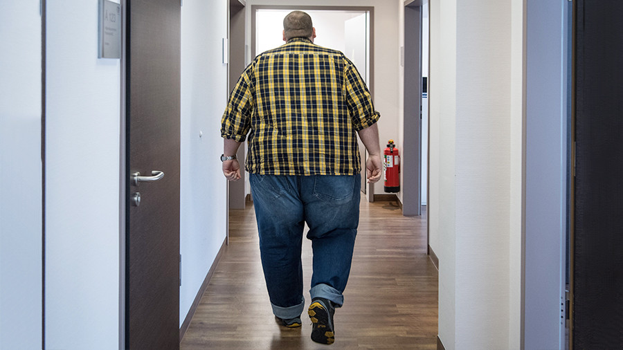 Американские биохимики раскрыли, что провоцирует ожирение