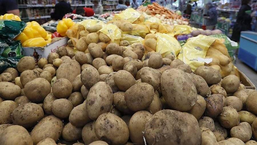 Картофель может подорожать в 2018 — специалисты