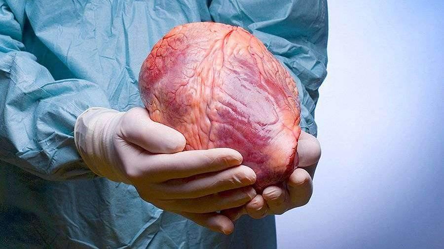 Медики назвали способ избежать смерти от инфаркта