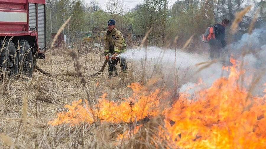 В Приамурье потушили все природные пожары