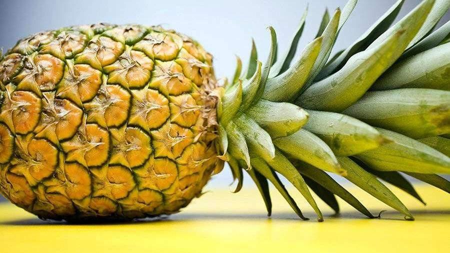 Диетолог назвала помогающие сбросить лишний вес продукты