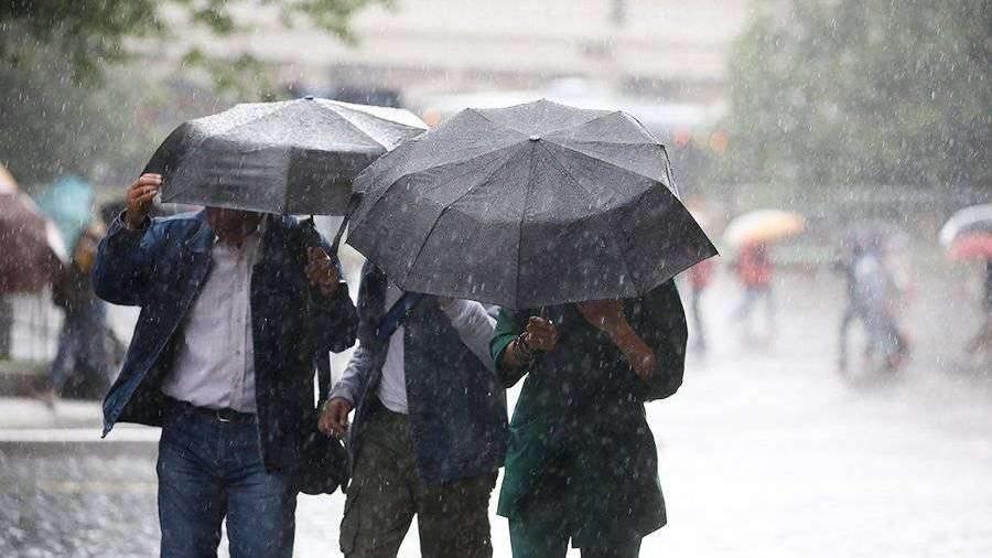 Синоптик предсказал аномальную погоду летом в Москве