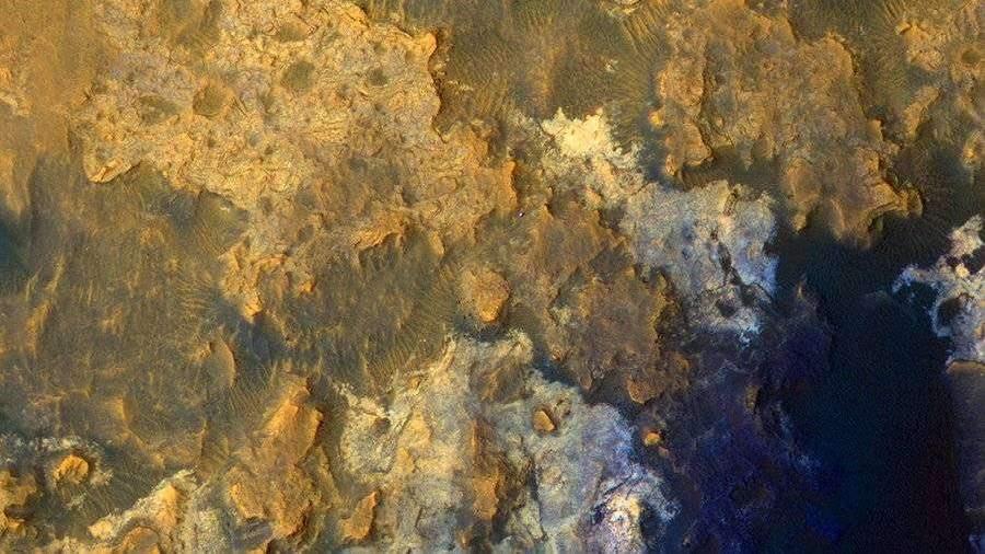 Ученые из России доказали возможность жизни микробов на Венере и Марсе