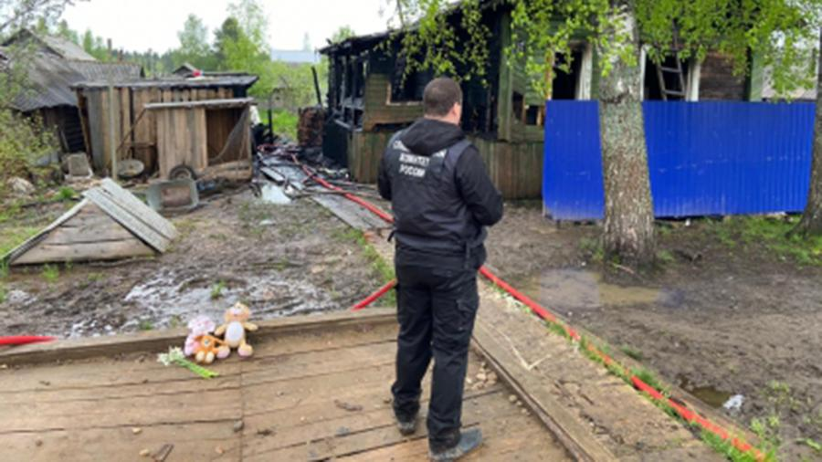 По факту гибели двух детей в Костромской области возбуждено дело
