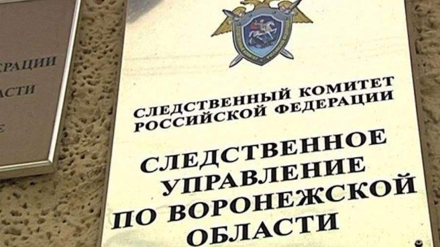 Обвиняемого в убийстве ребенка подростка арестовали в Воронежской области
