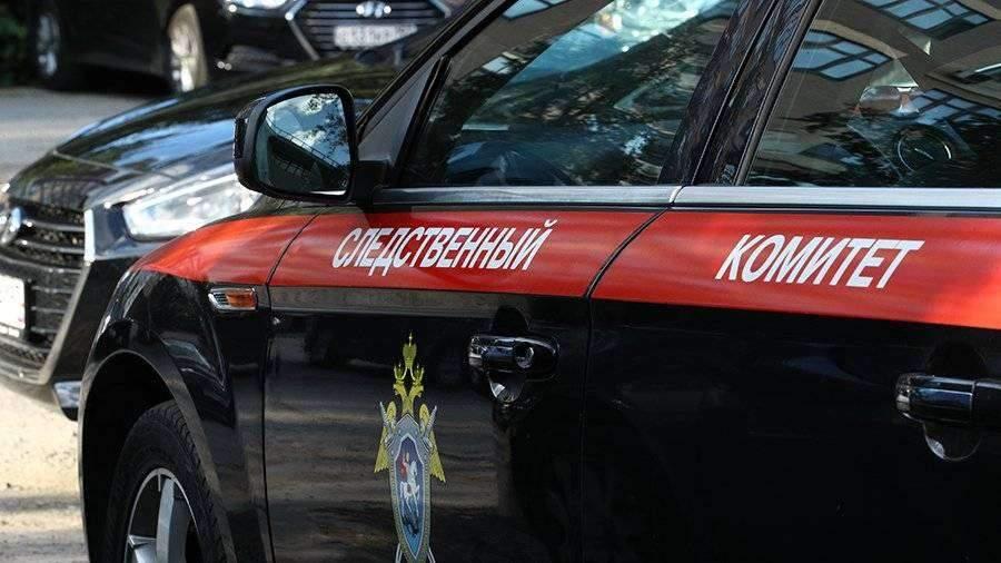 СК завершил расследование дела о фейке об избирательности коронавируса