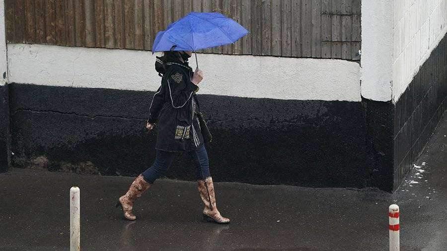 В МЧС рассказали о последствиях дождей в Подмосковье