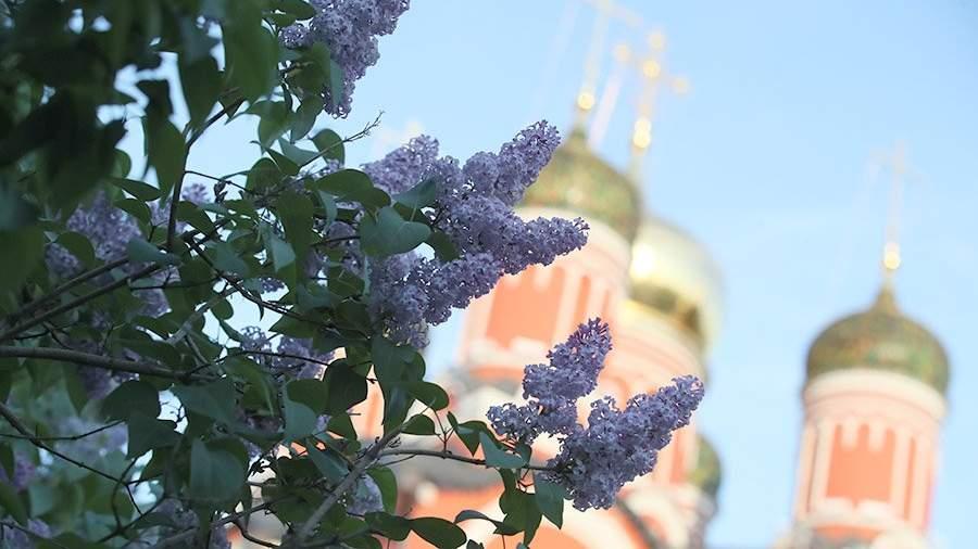 KAZ 8571.JPG Синоптики назвали сроки прихода майской погоды в центральную Россию
