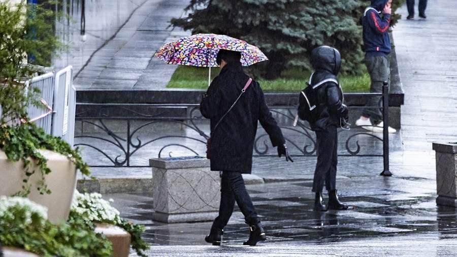 KKP5064 Вильфанд назвал сроки прихода в Москву летних дождей