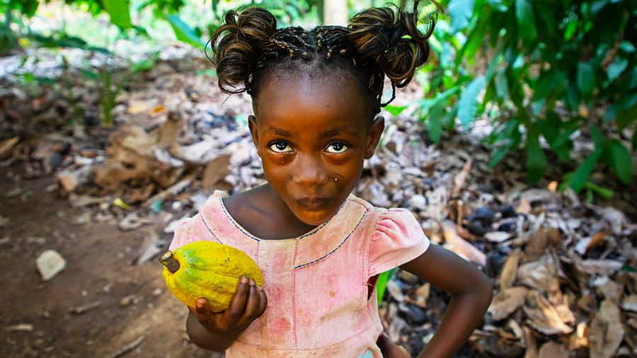 Горький шоколад: взрослые и дети на плантациях какао