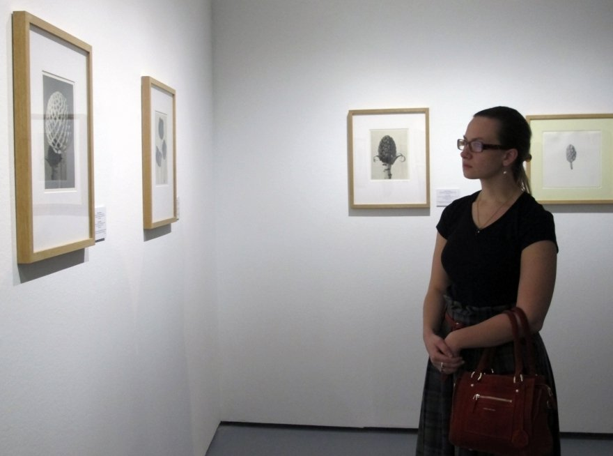 Биеннале о моде и стиле началось с «Диалогов о природе»