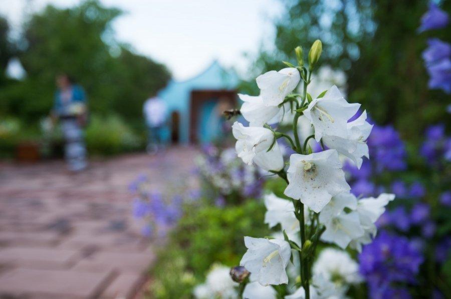 Крис Бердшоу: «Русские парки оказали влияние на ландшафтный дизайн»