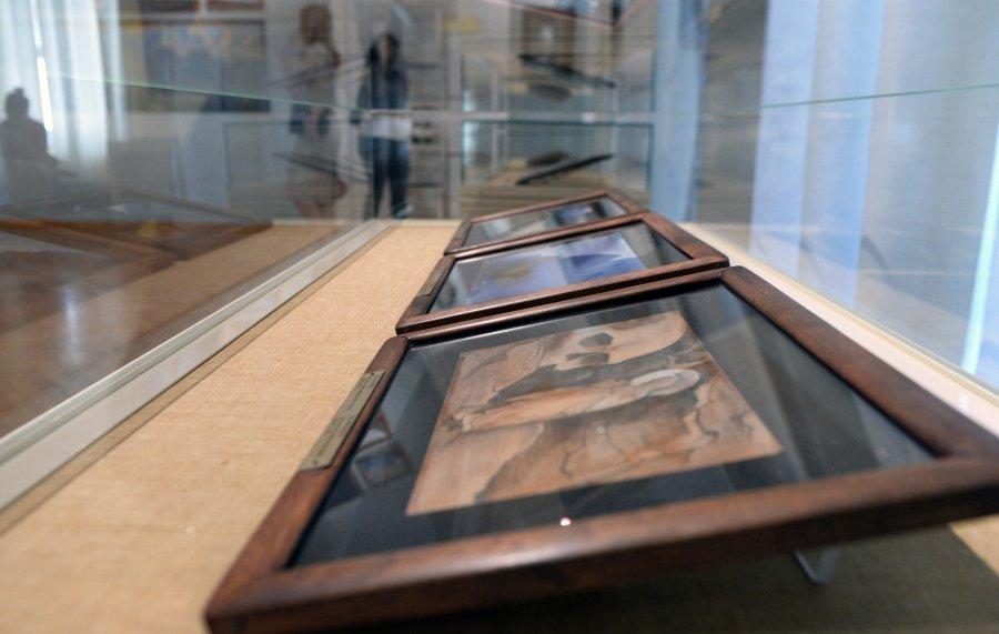 В битве за Рерихов может победить Музей Востока