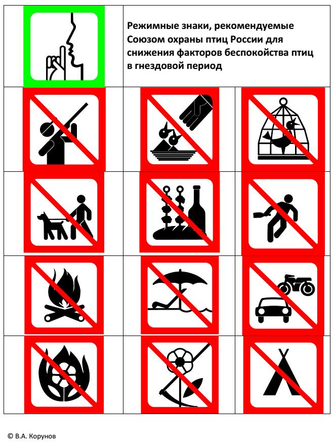 знаки в лесу запрещающие картинки