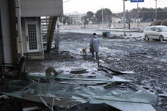 Япония: 5 лет после «Фукусимы»
