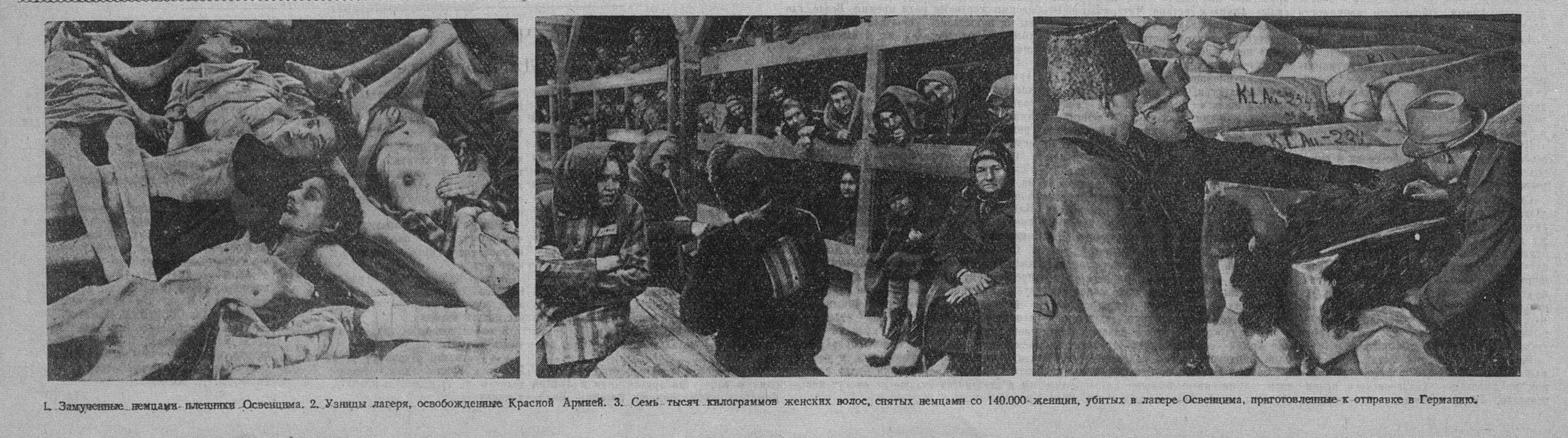 8 мая 1945 года в «Известиях»: Германия капитулировала, народы ликуют
