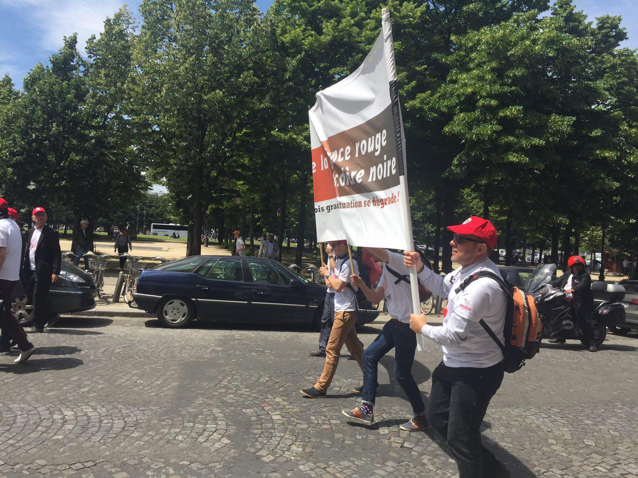 Экологи Франции присоединились к протестам. Видео