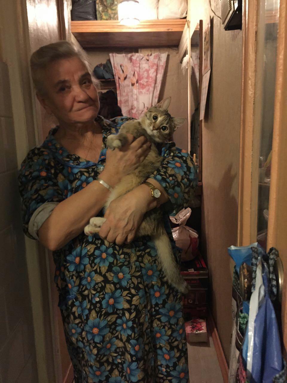 Мошенники с Украины оставляют одиноких московских старушек без квартир