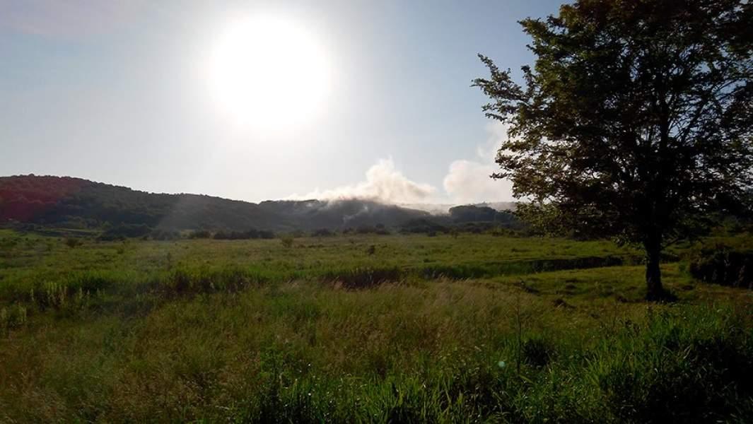Пожар на ГрибовицкомполигонеТБО в мае 2016 года