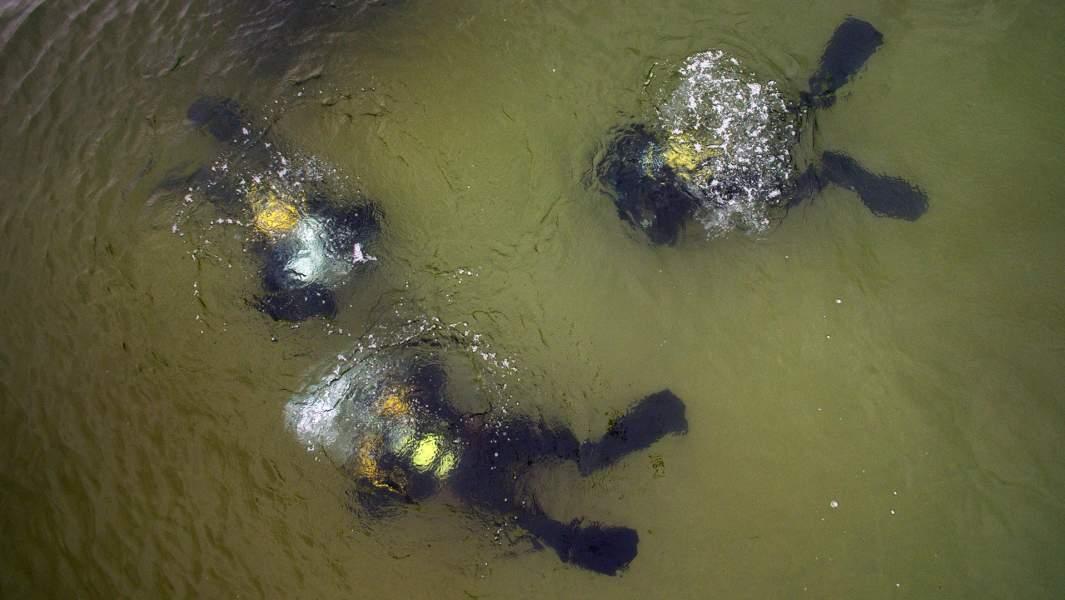 Водолазы собирают мусор со дна озера Байкал