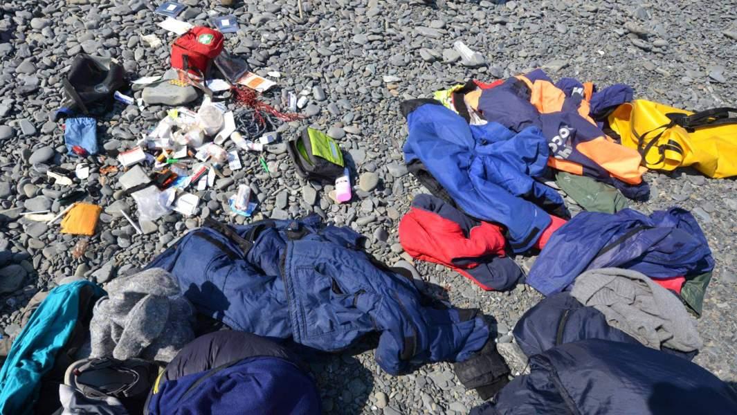 Лагерь волонтеров подвергся нападению со стороны людей, предположительно, занимавшихся отловом косаток