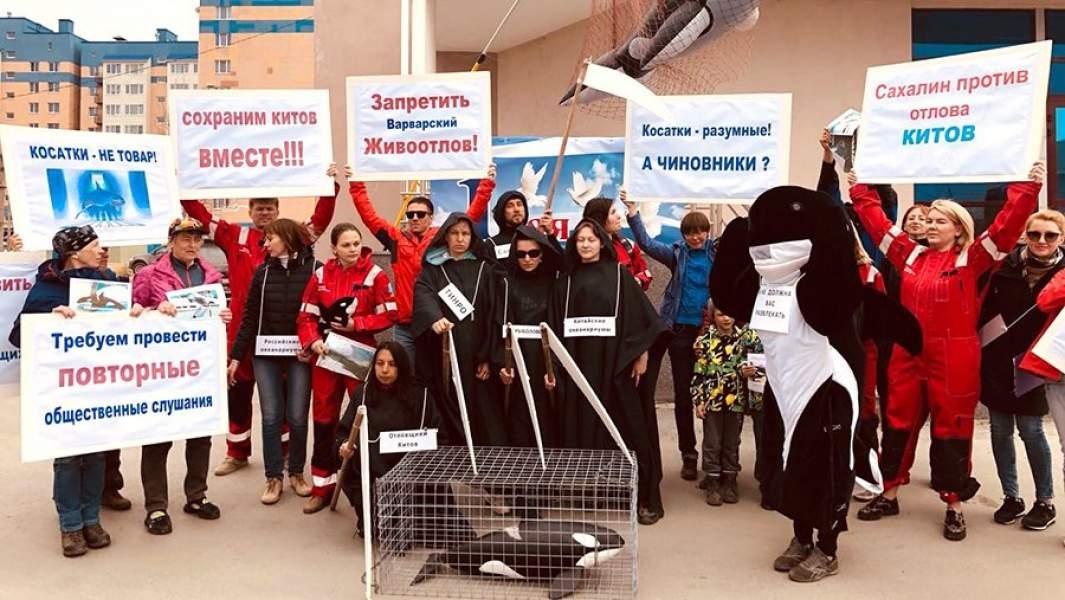 Пикет в защиту хищных китов прошел вЮжно-Сахалинске