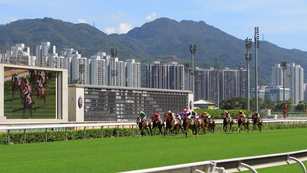 Скачки на ипподроме вГонконге