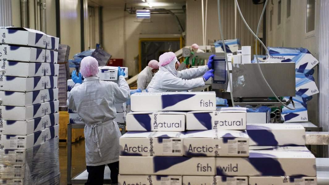 Работники в цехе рыбоперерабатывающей фабрики