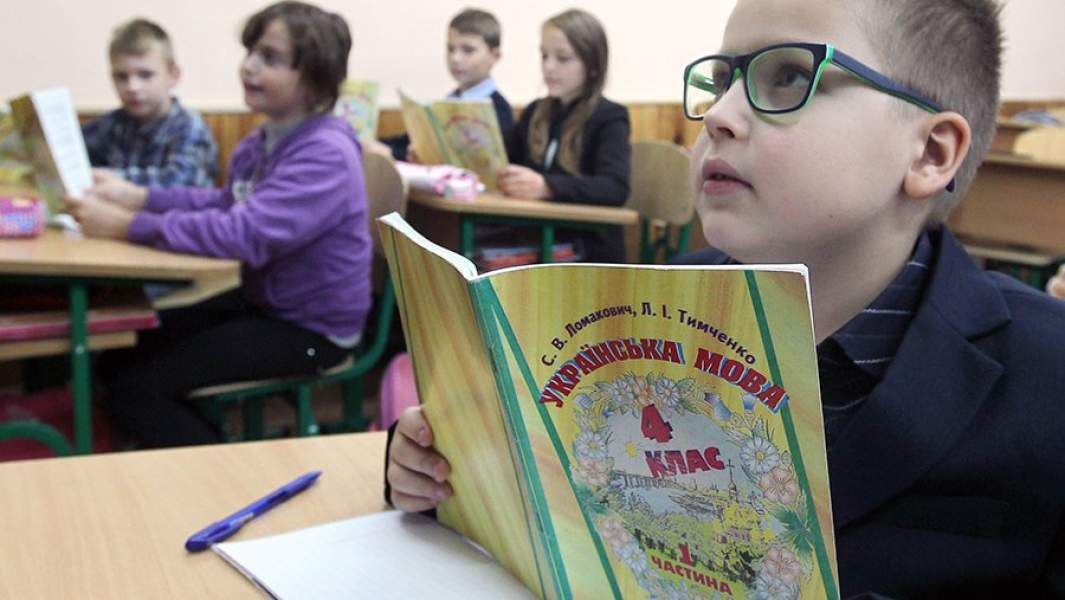 Ученик на уроке украинского языка в общеобразовательной школе № 4 города Вишневое, Киевская область