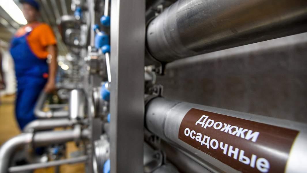 пивные дрожжи завод розлив напитки