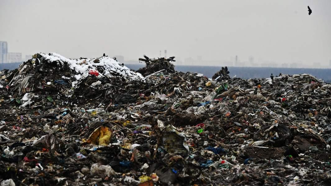 Мусор на полигоне твердых бытовых отходов «Кучино»