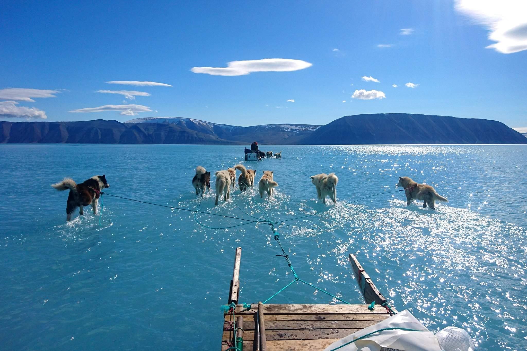 Картинки по запросу гренландия