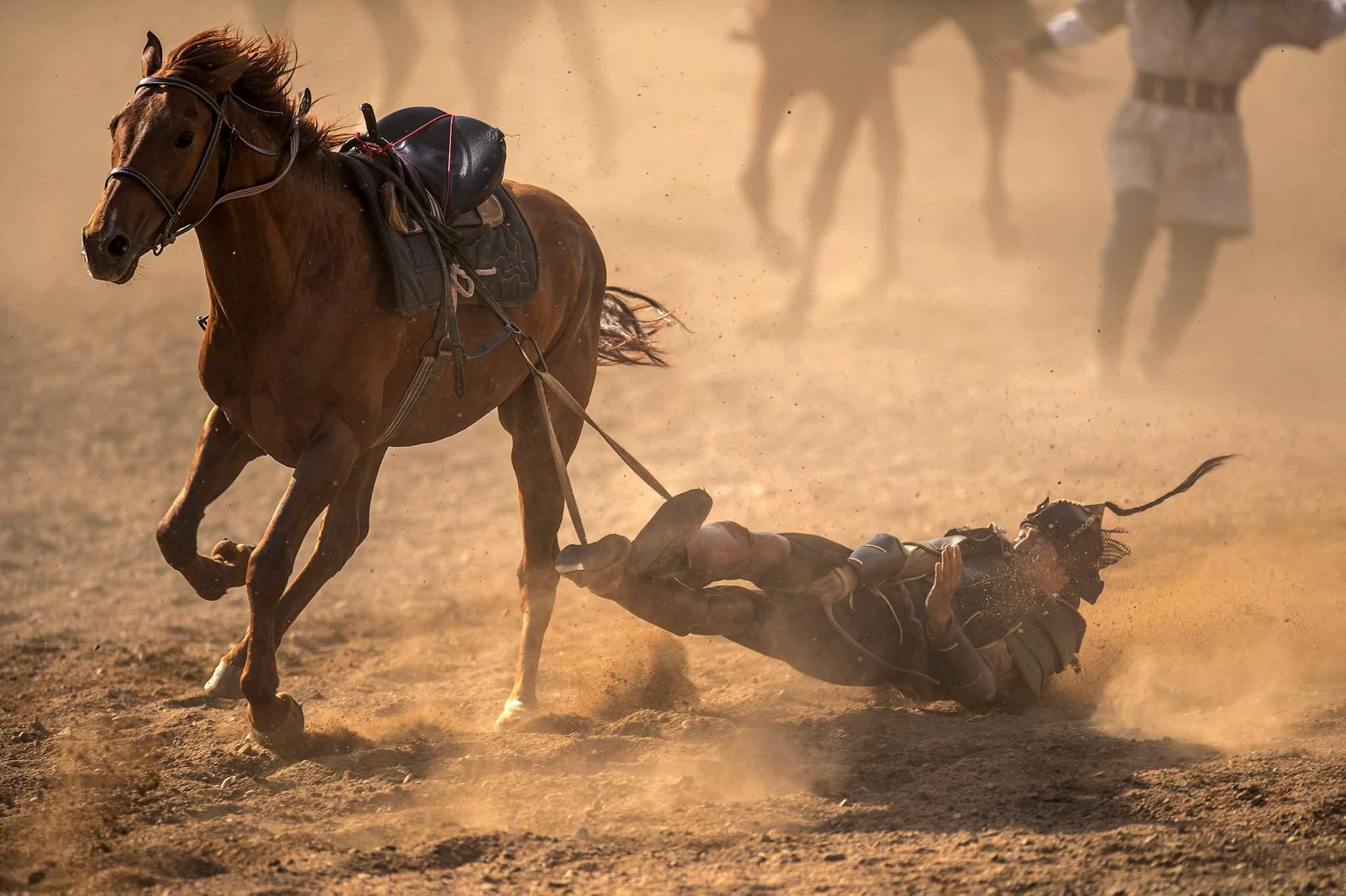 Морин спортын төрөлд 230 морьтон өрсөлдсөн.