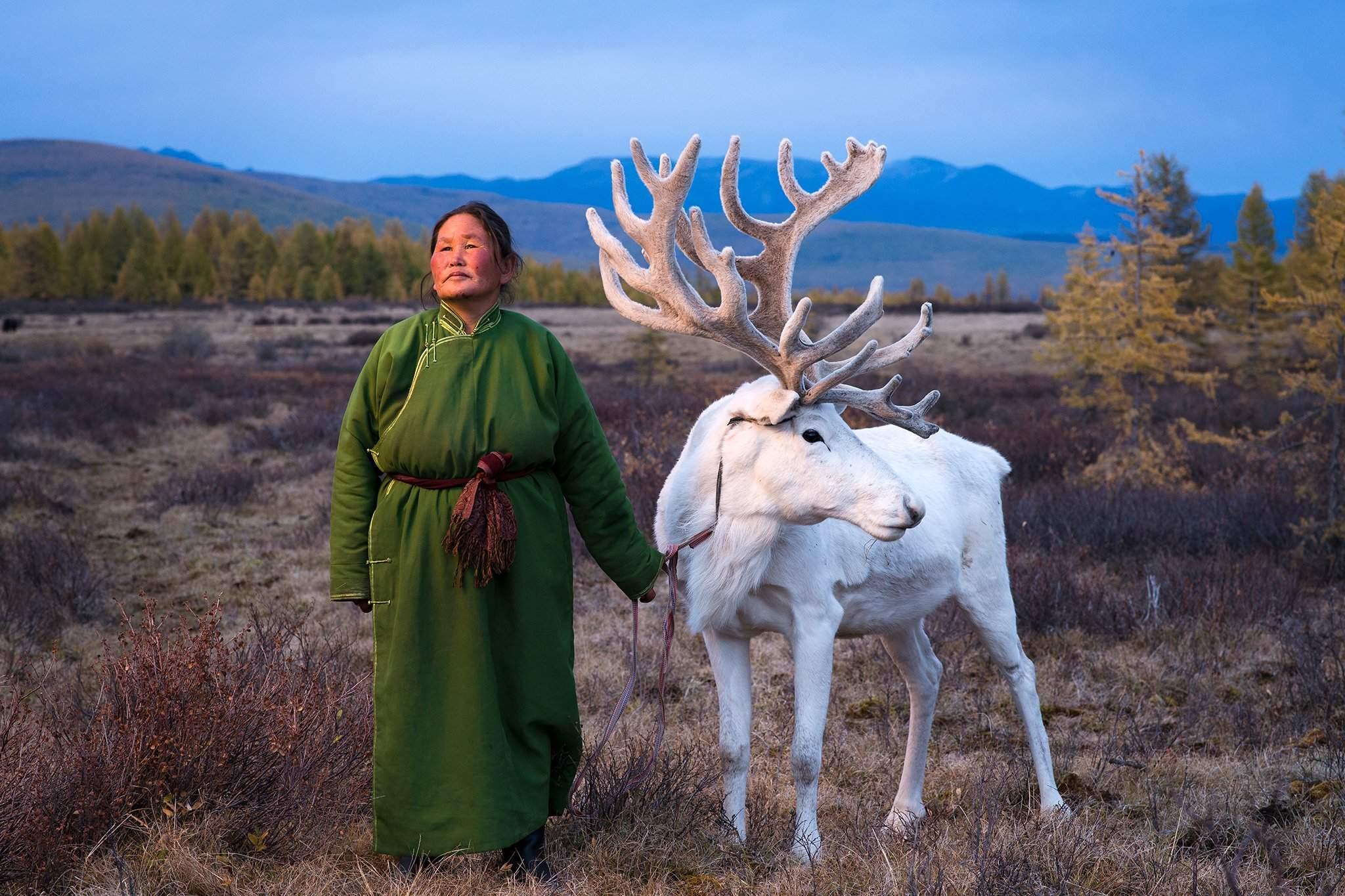 Цаатнууд Монголын хойд хэсэгт нүүдэллэн амьдардаг.