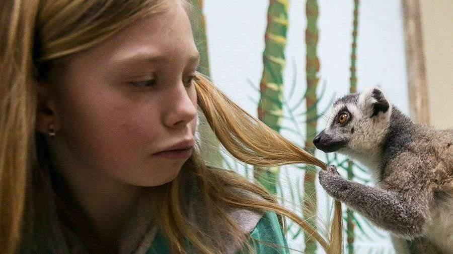 Дело возбудили после гибели животных в контактном зоопарке Челябинска