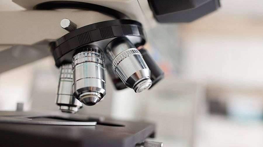 Японские ученые научились выявлять рак с помощью червей