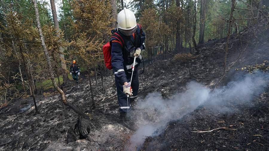 В МЧС назвали неблагоприятным прогноз развития природных пожаров в РФ
