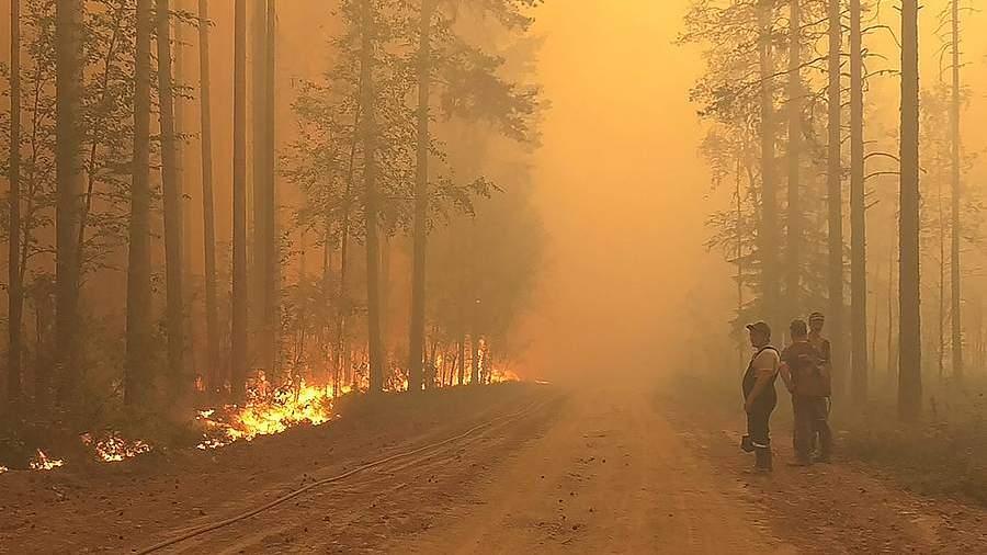 Режим ЧС ввели на всей территории Карелии из-за природных пожаров