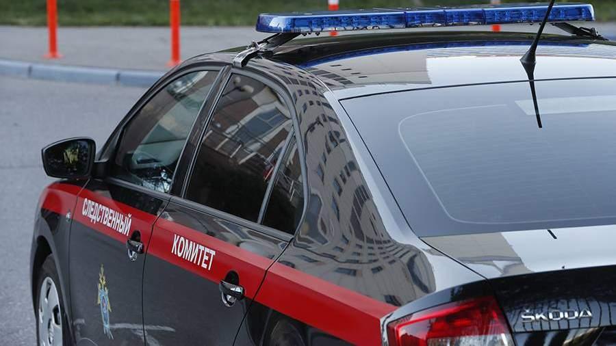 СК возбудил уголовное дело по факту избиения сына Стаса Пьехи