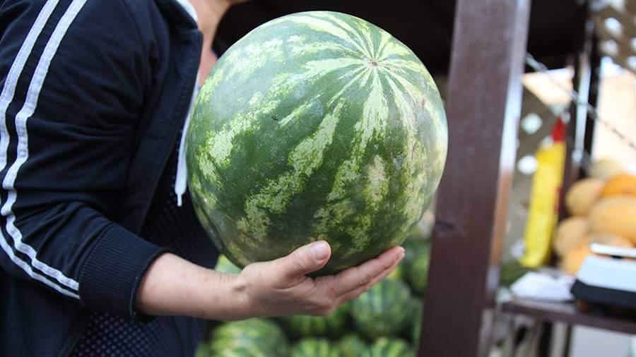 Токсиколог назвал возможные причины отравления арбузом в Москве