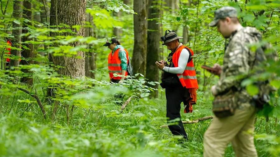 Волонтеры поискового отряда «Лиза Алерт» во время поисково-спасательных работ