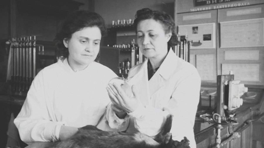 Зинаида Ермольева (справа) за работой